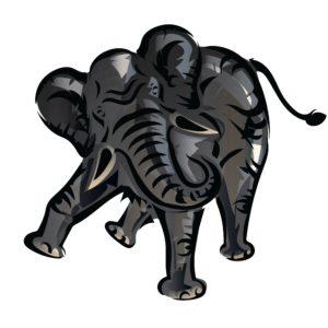 Combats éléphants